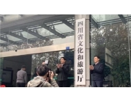 PLEXUS(派乐斯)-四川省文化和旅游厅办公楼项目